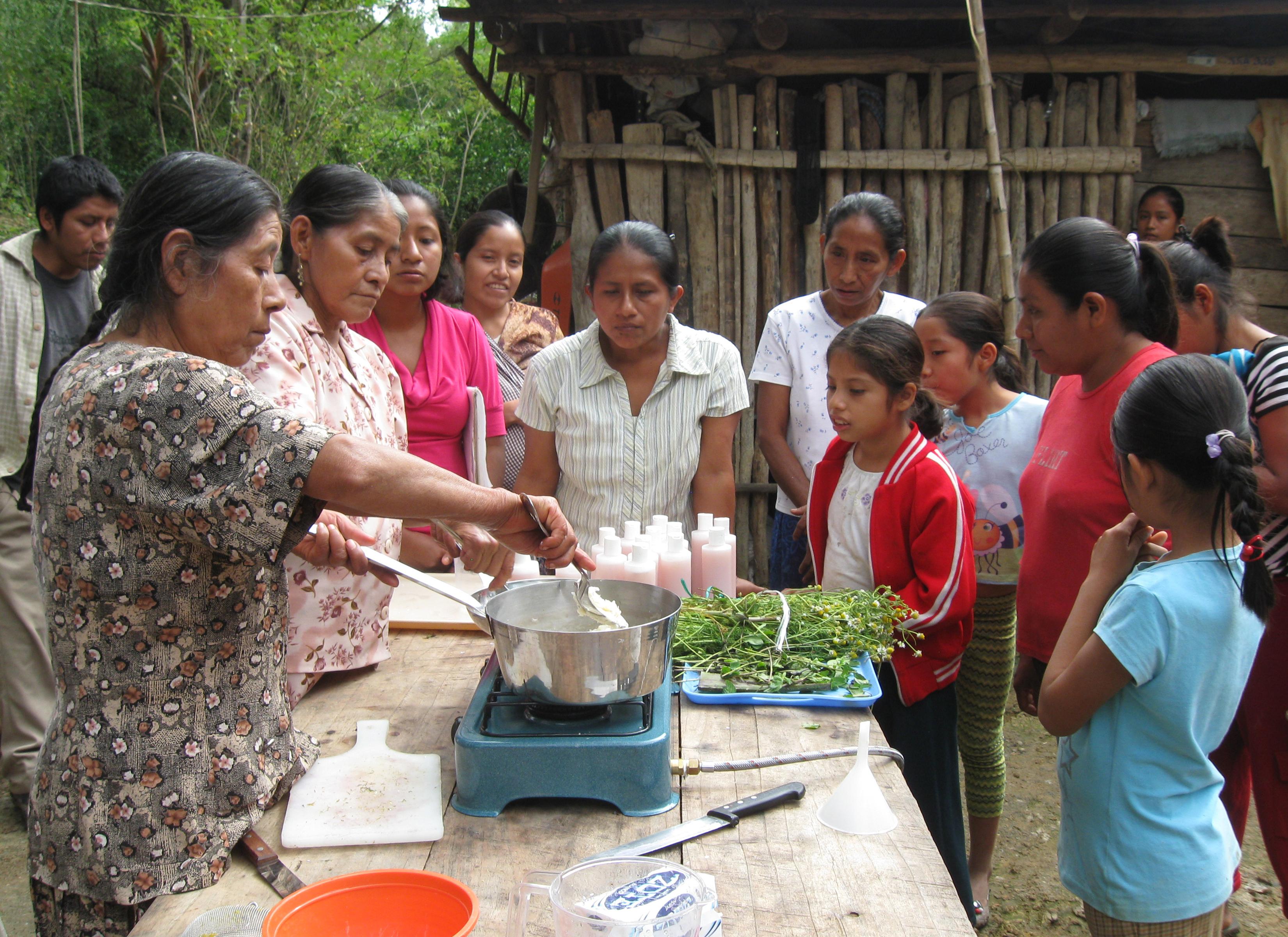 Servicio Desarrollo y Paz Huasteca Potosina A.C (2)
