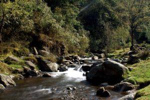 Río Magdalena Autor José Luis Ruiz